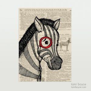 Zebra, Norman, Monocle